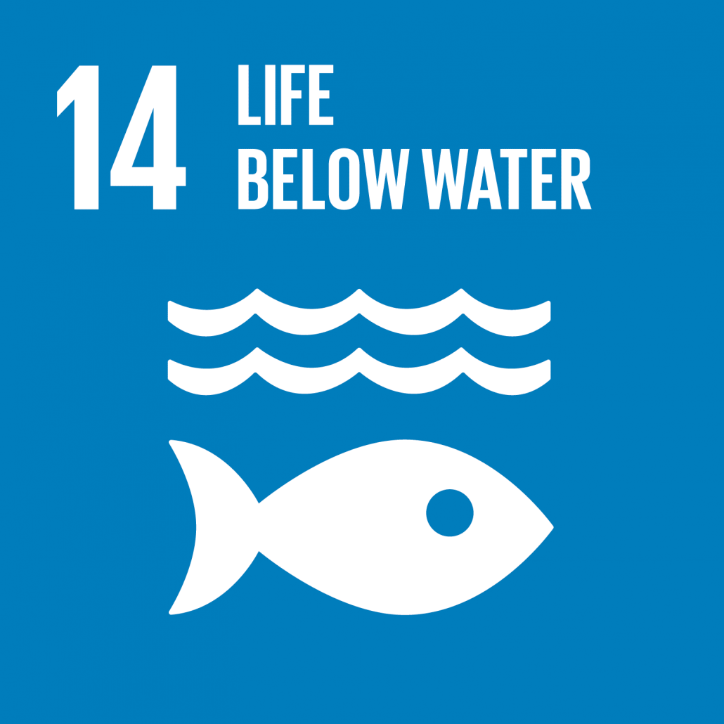 Information on project aiming to reach Sustainable Development Goal 14: Life below water.