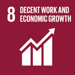Information on project aiming to reach Sustainable Development Goal number 8: Decent work and economic growth.